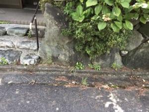 滋賀県長浜市周辺不用品回収後画像