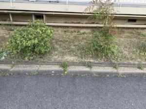 愛知県豊田市不用品回収後画像